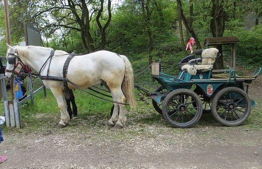 Horse-drawn Carriage, Horse, Transport, Nostalgia