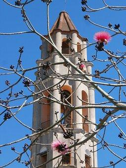 Torre De Iznaga, Cuba, Tower, Flowers, Trinidad