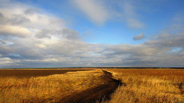 Road, Field, Russia, Rye, Wheat, Trail, Village, Sky