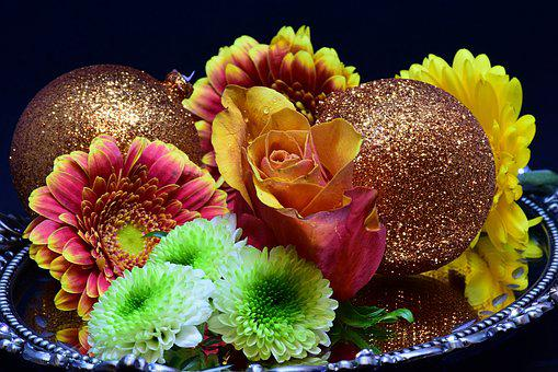 Gerbera, Flowers, Shell, Decoration, Christmas, Balls