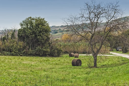 Landscape, Straw, Agriculture, Field, Nature, Hay, Bale