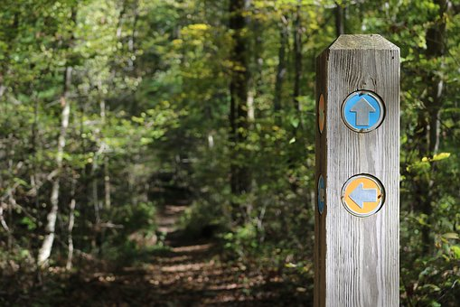 Trail Marker, Signpost, Trail Sign, Way Marker, Forest