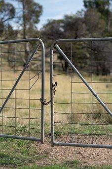 Gate, Chain, Latch, Access, Closed Shut, Paddock, Farm