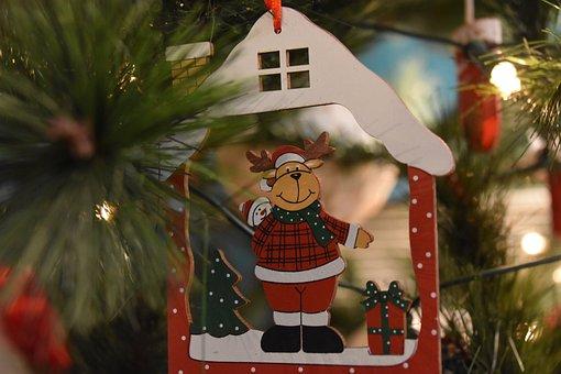 Fir, Christmas, Decoration, Bear