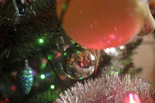 Christmas Tree, Christmas, Christmas Baubles, Fir