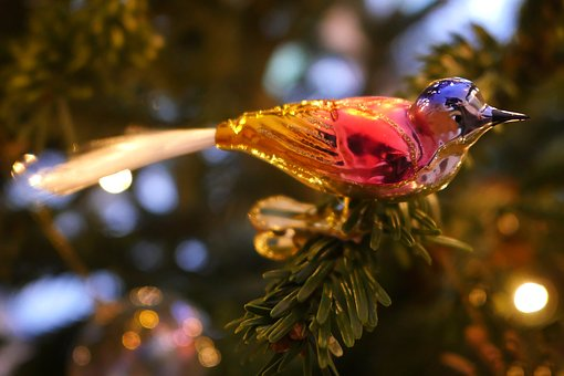 Christmas Decorations, Bird, Christmas, Decoration
