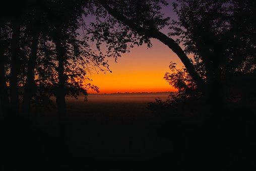 Ground Mist Illinois Dawn, Dawn, Morning, Outdoor