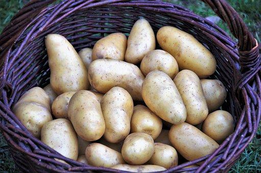 Potato, Basket, Potatoes, Vegetables, Bio, Vitamins