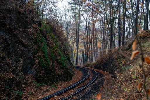 Resin, Railway, Rails, Narrow Gauge Railway