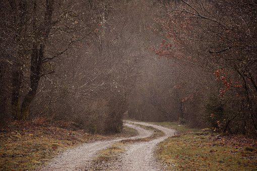 Foggy, Misty, Spooky, Mysterious, Old Road, Timeworn