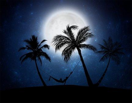 Moon, Night, Dark, Palms, Hammock, Silhouette