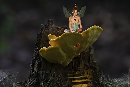 Fantasy, Fairy Tales, Elf, Tree Stump, Stairs
