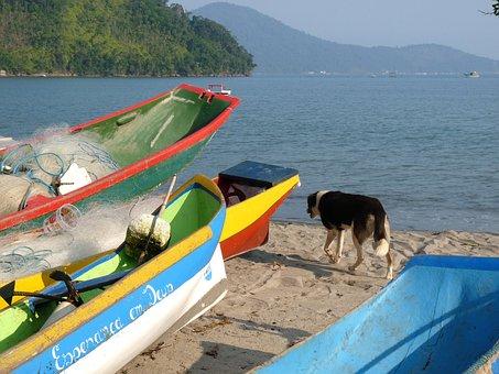 Canoes, Beach, Dry Bar, Ubatuba, São Paulo, Brazil