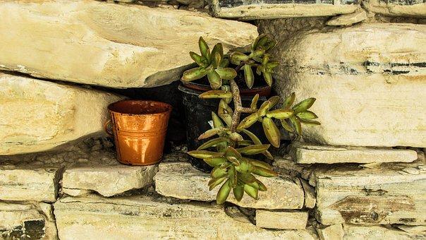Flower Pot, Wall, Stone, Decoration, Village, Cyprus