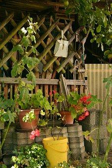 Allotment, Idyllic Garden, Garden, Gardening