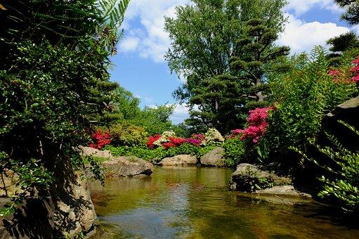 Düsseldorf, Japanese Garden, Ornamental Garden, Park