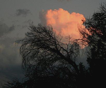 Clouds, Dense, Round, Sunset, Orange-pink, Bright, Glow