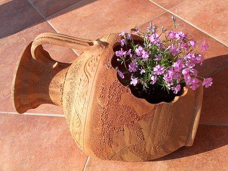 Summer, Plant, Purple, Pink, Nature, Summer Flower