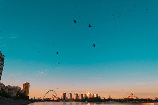 Astana, Pigeons, Birds, The Ishim River, Sunset, Sky