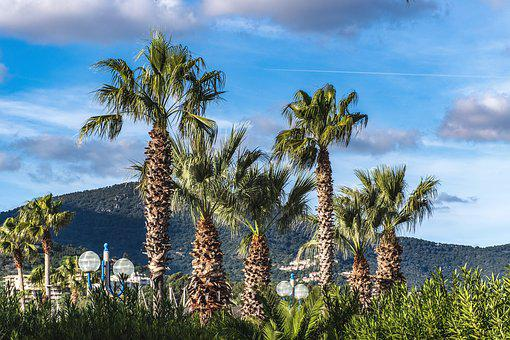 Cavalaire Sur Mer, France, French Riviera