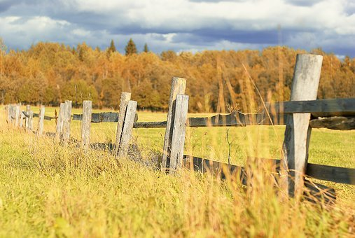 Field, Fence, Grass, Clouds, Sky, Nature, Autumn