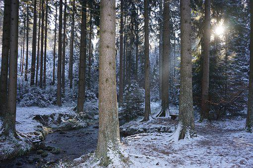 Silver Valley, Horn-bad Meinberg, Teutoburg Forest