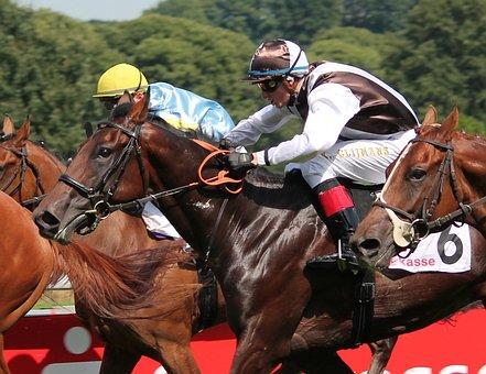 Horse Racing, Jockey, Horse, Sport, Equestrian