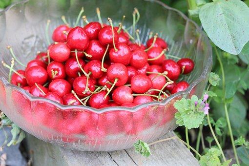 Cherries, Love, Fruit, Summer, Vitamins, Nature, Red