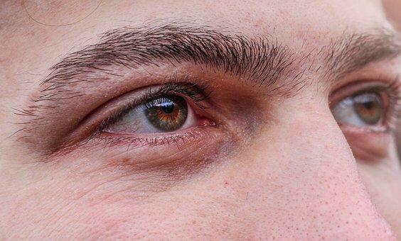 Eye, Human, Face, View, Iris, Pupil, Watch, Shining