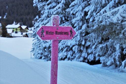 Trail, Alpine, Snow, Signpost, Pink, Winter, Cold