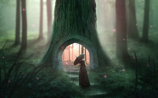 Photoshop, Collage, Forest, Woman, Nature, Fantasy