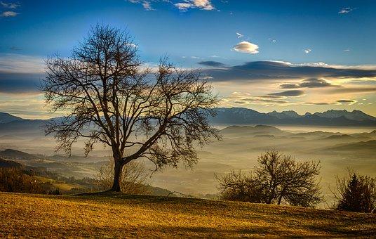 Lavanttal, Koralpe, Carinthia, Fog, Autumn, Nature