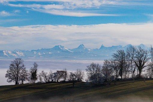 Fog, Mountain Range, Eiger, Monk, Finsteraarhorn