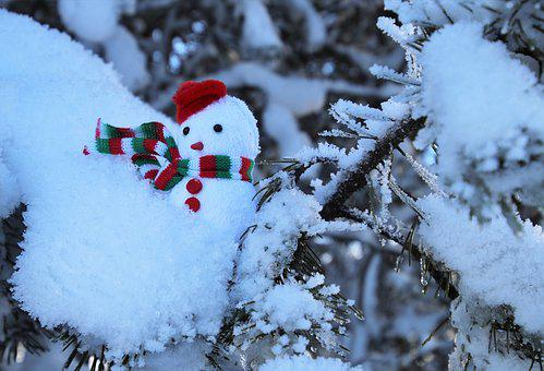 Snow, Sprig, Winter, Frost, Scarf, Snowman, Needles