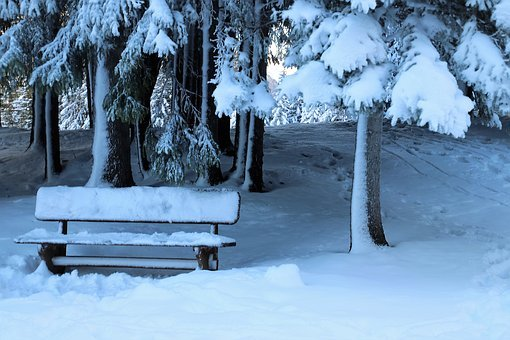 Winter, In The Forest, Bench, Seat, Quiet, Relaxation