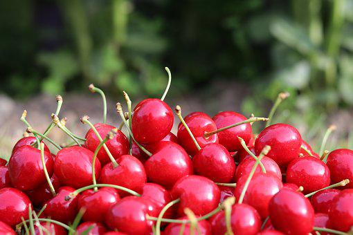 Cherries, Goodness, Red, Delicious, Breakfast, Nature