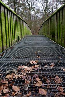 Bridge, Wood, Nature, Away, Pedestrian Bridge, Railing