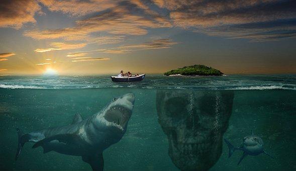 Island, Hai, Photomontage, Photoshop, Dangerous