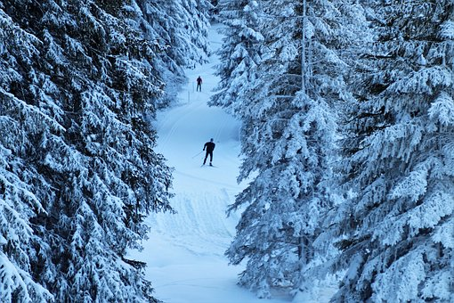 Route, Ski, Vacations, Snow, Frost, Frozen