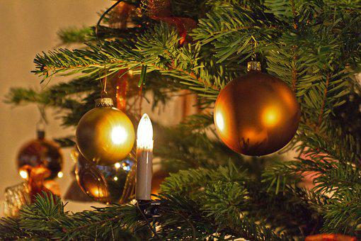 Christmas, Christmas Tree, Shining, Advent
