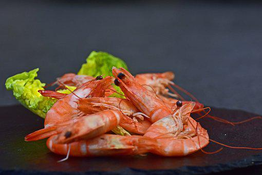 Shrimp, Cooked, Unpeeled