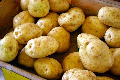 Farm Market Potatoes, Spuds, Healthy, Fresh, Food