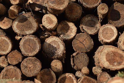 Brown, Log, Wood, Trunks, Nature, Tribe, Firewood, Bark
