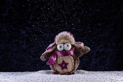 Owl, Winter, Snow, Funny, Cap, Scarf, Bird, Cute