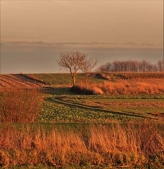 Landscape, Sunset, Day Over, Agriculture