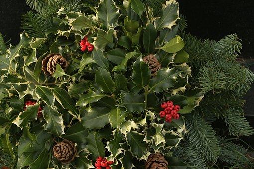 Holly, Acorn, Cherries, Ivy