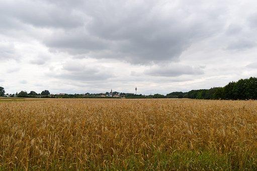 Landscape, Field, Agriculture, Village, The Ecclesia