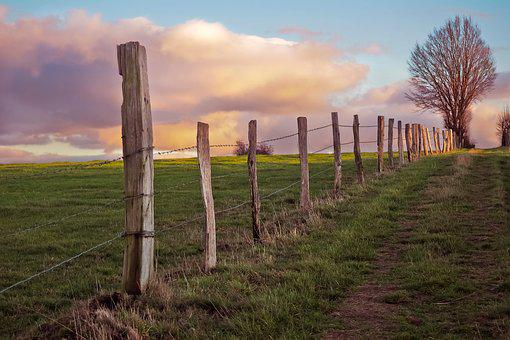 Landscape, Nature, Clouds, Tree, Rest, Sky, Scenic