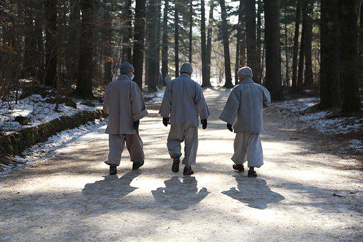 Monk, Monks, Walk, Fir Forest, Odaesan, Winter