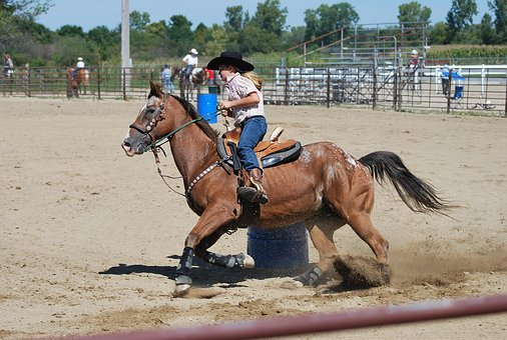 Cowgirl, Barrel Racing, Rodeo, Horse, Appaloosa